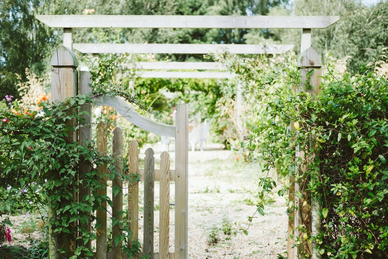 Photo of a Garden Gate